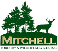 Mitchell Forestry & Wildlife Resources, Inc : Jay Mitchell