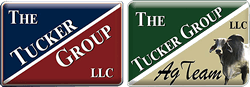 The Tucker Group, LLC : Brandon Tucker