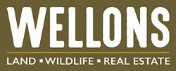 Ben Wellons @ Wellons Real Estate