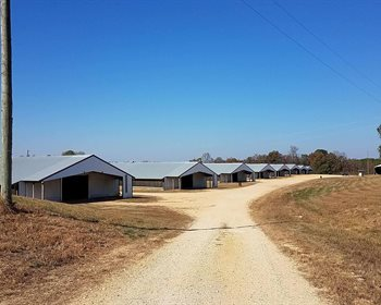 Fully Operational Alabama Poultry Farm