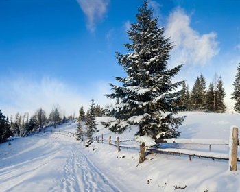 Things to Think About When You Are Looking for Property in the Winter