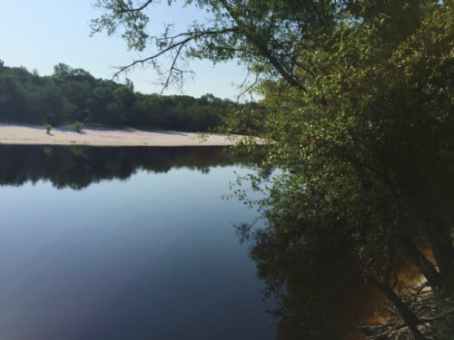 1139 Acres Satilla River Plantation : Nahunta : Brantley County : Georgia