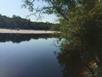 1139 Acres Satilla River Plantation : Nahunta : Brantley County : Georgia