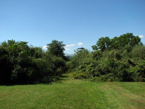14 Acres - Flat Overgrown Pasture : Allenwood : Union County : Pennsylvania