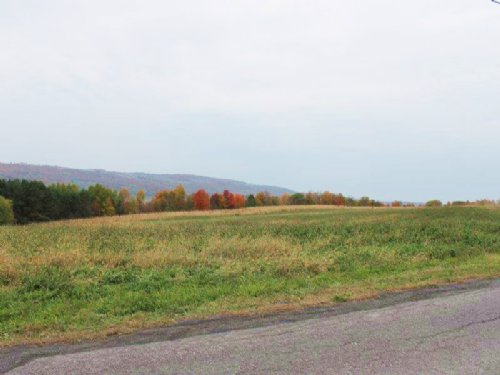 Farmland Building Lot 5 Acres : Stockbridge : Madison County : New York