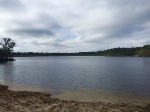 Recreational Hunting Land With Lake : Prentiss : Jefferson Davis County : Mississippi