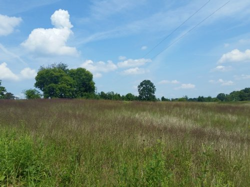 5 Acres - Cleared & Level : Jefferson City : Jefferson County : Tennessee