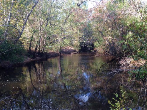 Rec And Timber Tract With Big Creek : Lyons : Toombs County : Georgia