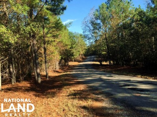 Home Site And Recreation Tract : Titus : Elmore County : Alabama