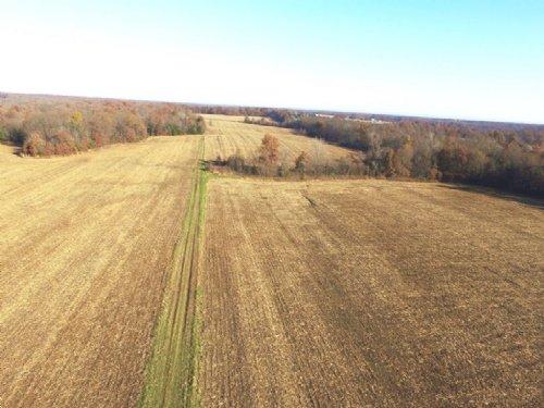 180 Acres : Wright City : Warren County : Missouri