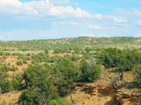 40 Acre Hilltop Wilderness Ranch