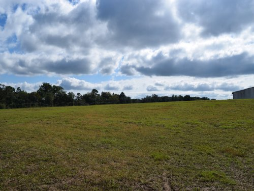 10 Acre Next To State Forest : Brooksville : Hernando County : Florida