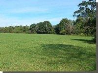 120.00 Acres Cattle Farm Land