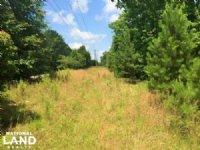 4.72 Acre Recreational Homesite/com