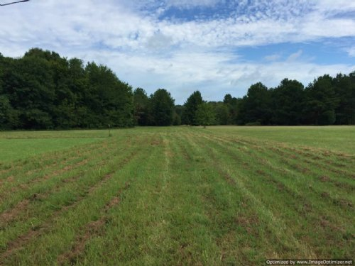 18 Acres With Running Creek : Utica : Copiah County : Mississippi