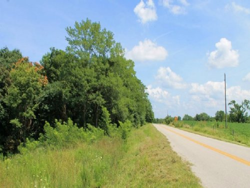 8.22 Acres Cumberland Ridge Ranch : Burkesville : Cumberland County : Kentucky