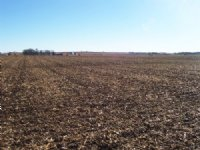 Irrigated Farmland Auction