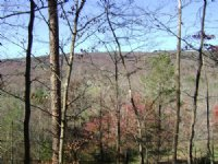 Wooded Lot In Great Neighboorhood : Dayton : Rhea County : Tennessee