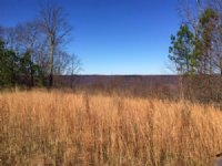 7.32+/- Acres Near State Forest : South Pittsburg : Marion County : Tennessee