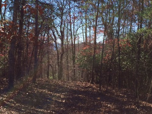 6.96+/- Acres In The Ridges : South Pittsburg : Marion County : Tennessee