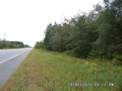 Multi-Use 13 Acre Tract : Screven : Wayne County : Georgia