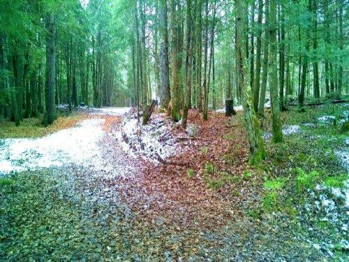 7.10 Ac Koernet Creek : Lac Du Flambeau : Vilas County : Wisconsin