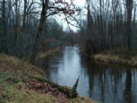 20 Acre Parcel With River Frontage