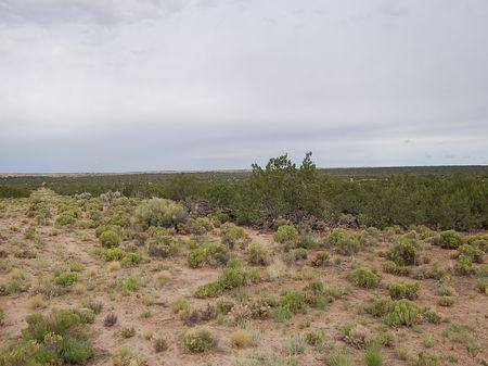 5 Acres In Eastern Arizona : Holbrook : Apache County : Arizona