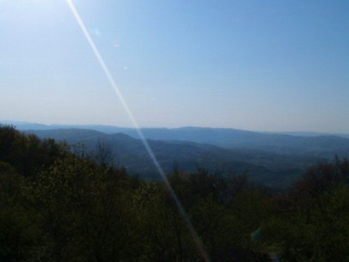 Lot P-5 Atop Point Lookout Mountain : Independence : Grayson County : Virginia