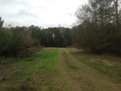 29-027 Benson 253 : Santuck : Elmore County : Alabama
