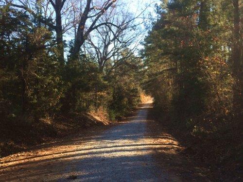 Freeman Rd Tract : Tignall : Wilkes County : Georgia