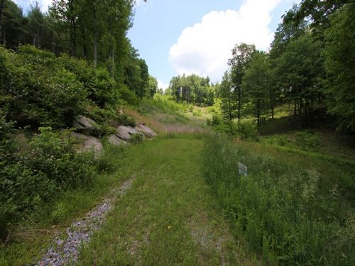 Lot 5 Secured Gated Community : Independence : Grayson County : Virginia