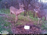 Antelope County, Buck Run