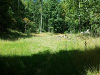 Secluded Hunting Tract, 17.238 Acre : Independence : Grayson County : Virginia