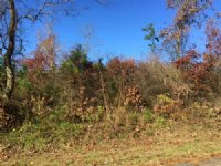 27.5 +/- Acres With 3 Mobile Homes
