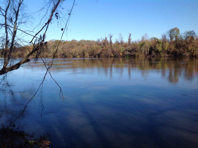 210 Acres Along Alabama River : Selma : Dallas County : Alabama