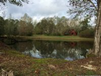 200 Acres Hunting Land