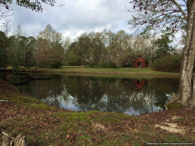 200± Acres Hunting Land : Hazlehurst : Copiah County : Mississippi