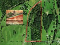72.20 Acres Hunting Land, Timber
