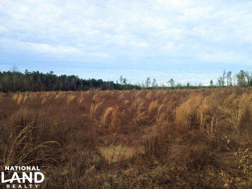 Aynor Development Tract : Aynor : Horry County : South Carolina