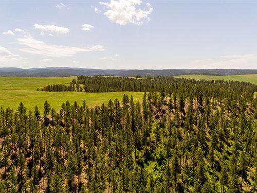 Supon Ranch Acreage : Beulah : Crook County : Wyoming