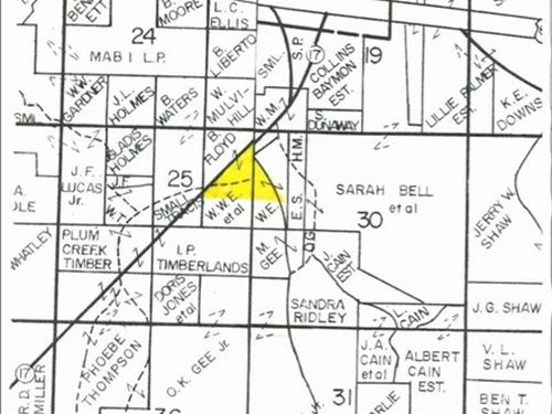 46 Acres In Carroll County : Carrollton : Carroll County : Mississippi