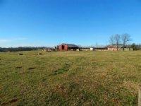 Cattle Farm W/ Home