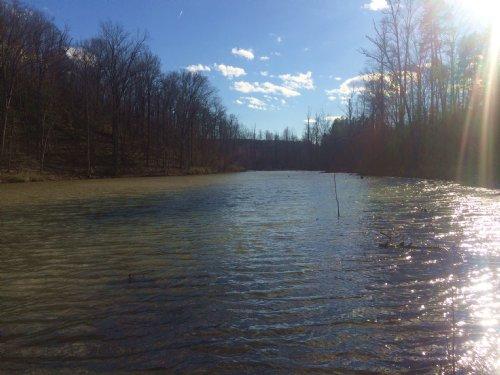 Lake Blalock Tract : Chesnee : Spartanburg County : South Carolina