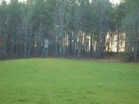 220 Acres With Lake House