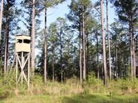 Natural Bridge Farm : Defuniak Springs : Walton County : Florida