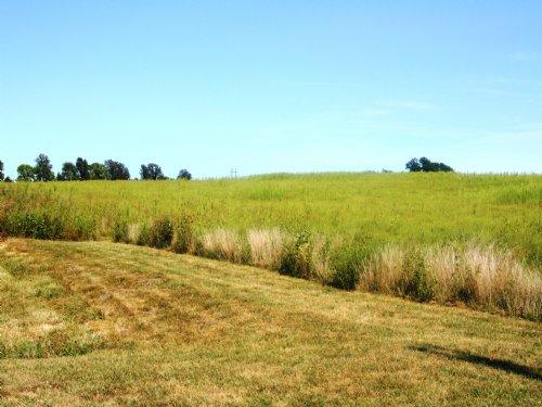 106.56 Acres Randolph County : Huntsville : Randolph County : Missouri
