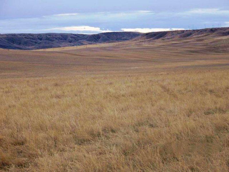 Downtown Ranch : Fort Benton : Chouteau County : Montana