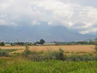 Development Farmland