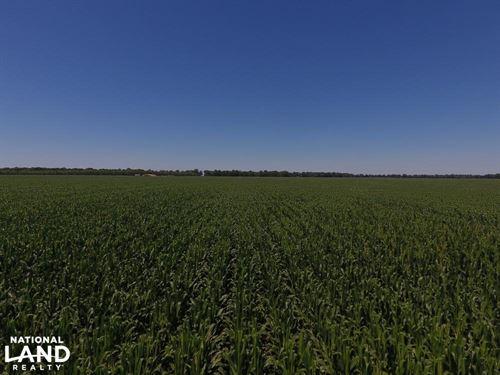1,392 Acres Row Crop Farmland : Wabbaseka : Jefferson County : Arkansas